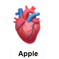 Anatomical Heart on Apple iOS