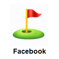 Flag in Hole on Facebook