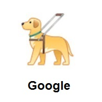 Guide Dog on Google Android