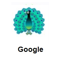 Peacock on Google Android