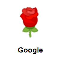 Rose on Google Android