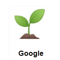 Seedling on Google Android