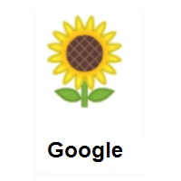 Sunflower on Google Android