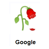 Wilted Flower on Google Android